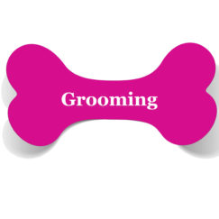 Spa & Grooming Products